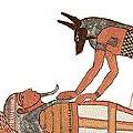 Mumifikacija ir jos etapai