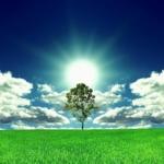 10 patarimų gyvenimui palengvinti