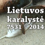 """Petras Cidzikas: """"Lietuvos karalystė 7531 * 2014"""""""