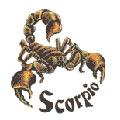 Horoskopas keliaujantiems: Skorpionas