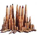 Lietuva keičia ginklų kontrolę reguliuojančius įstatymus