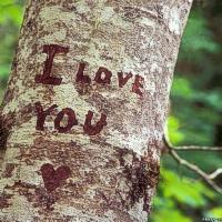Paryžiaus valdžia siūlo naują būdą prisipažinti meilėje