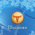 Naujos smulkmenos apie Windows Longhorn