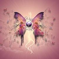 Meilės sparnai