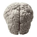 Mūsų smegenims reikalinga antivirusinė apsauga