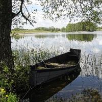 Akvakultūros reikšmė ir jos objektai pasaulyje ir Lietuvoje