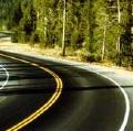Greitkelių trasos užtveria žvėrių migracijos kelius