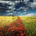 Nuoseklus kelias į visišką pasveikimą nuo depresijos