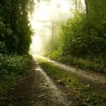 Kelias iš aklavietės