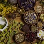 Vaistiniai augalai – nuo psichikos ir kūno negalavimų