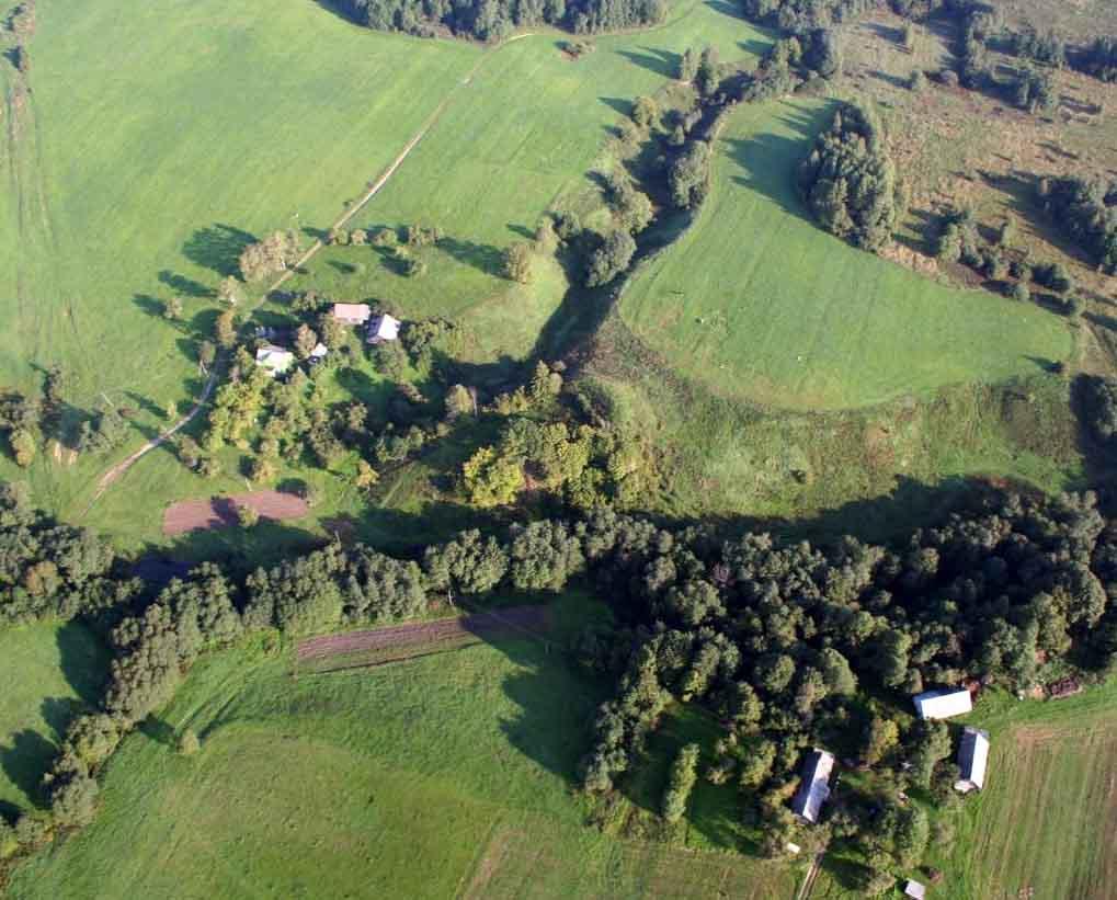 Medžionių piliakalnis | wikimapia.org nuotr.