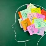 Kaip sugauti vienaragi?: Atmintis (II dalis)