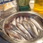 Žvejai įtikėjo: stintų ištekliai – neišsenkantys
