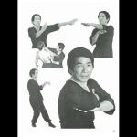Wing Tsun – perskaityk ir susidomėsi